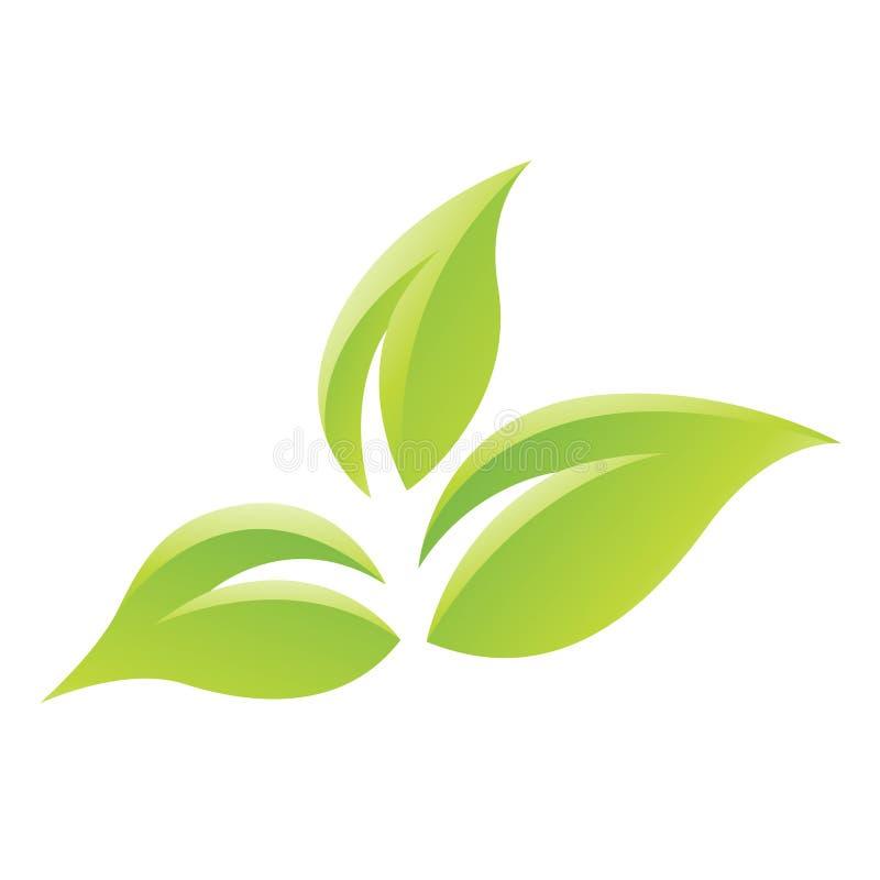 Zielona Glansowana liść ikona ilustracja wektor