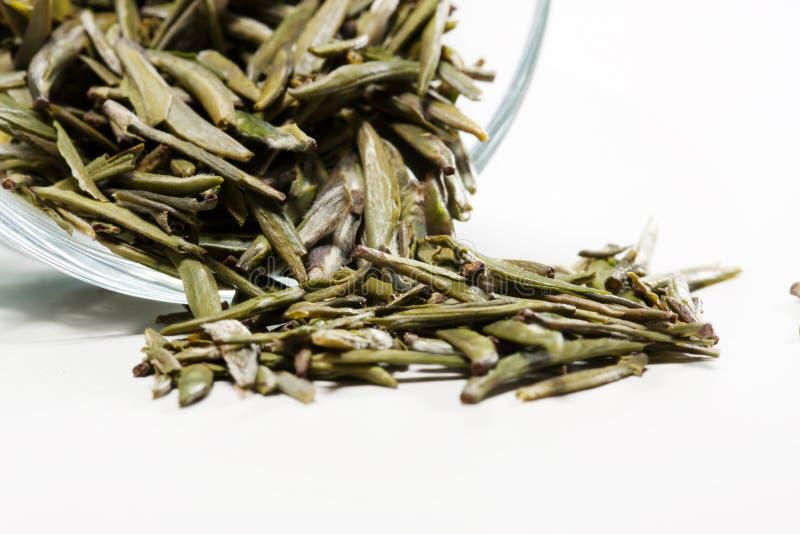 Zielona herbata zdjęcia royalty free