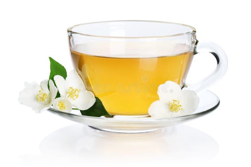 Zielona herbata z jaśminem obrazy royalty free