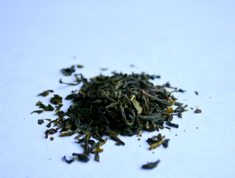 Zielona herbata z kwiatów płatkami obraz royalty free