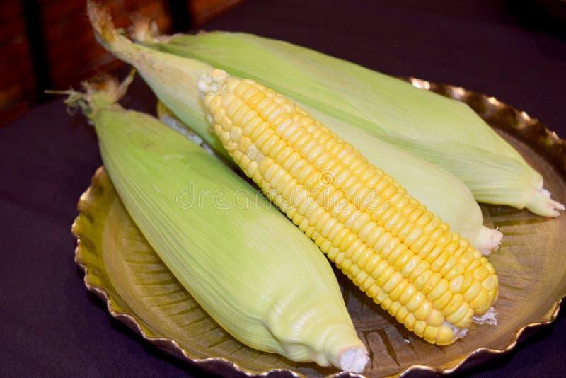 Zielona i żółta Młoda kukurudza na Złocistej tacy zdjęcie stock