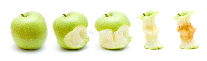 Zielona jabłczana łasowanie progresja obrazy stock