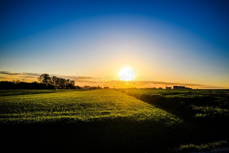 Zielona ??ka pod niebieskim niebem z chmurami Pi?kny natura zmierzchu krajobraz zdjęcie stock