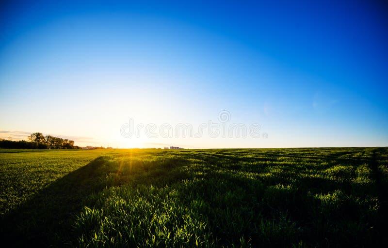 Zielona ??ka pod niebieskim niebem z chmurami Pi?kny natura zmierzchu krajobraz obrazy royalty free