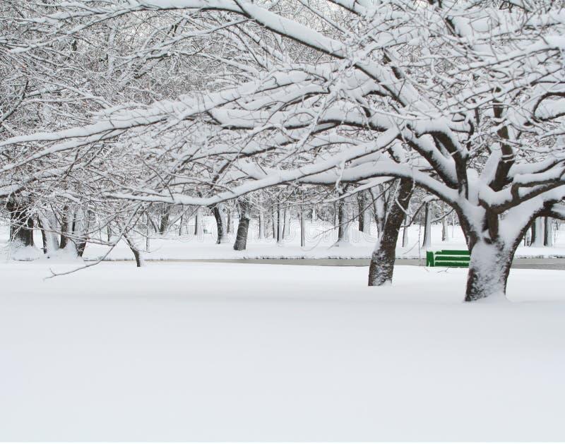 zielona kanap zimy. zdjęcia stock