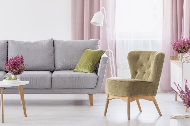 Zielona karło pozycja w białym żywym izbowym wnętrzu z popielatą leżanką, okno z pastelowymi menchiami drapuje i wrzosy obrazy stock