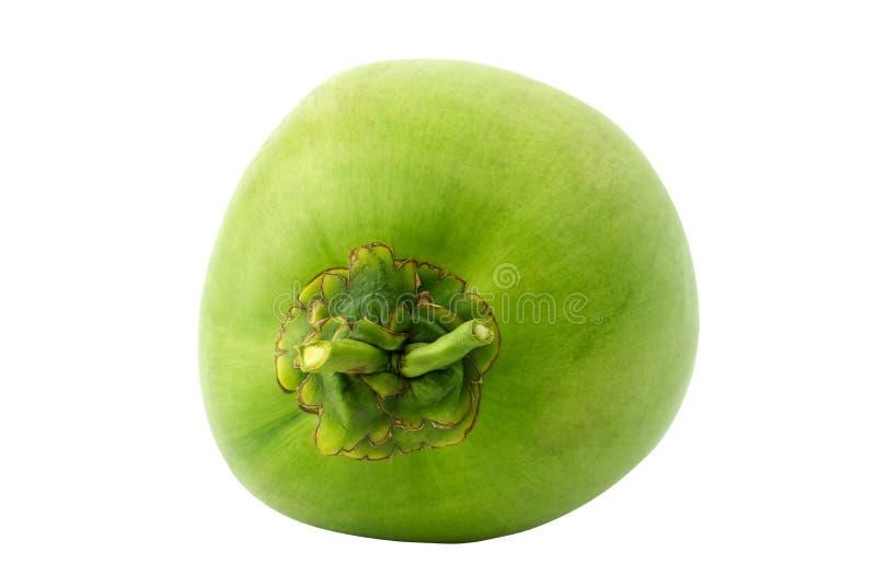 Zielona kokosowa owoc odizolowywająca na białym tle obrazy royalty free