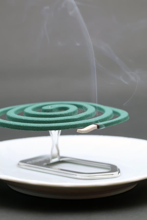 Zielona komar zwitka zdjęcie stock