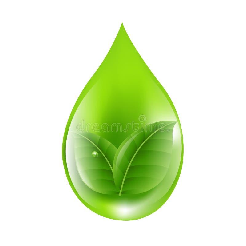 Zielona kropla royalty ilustracja