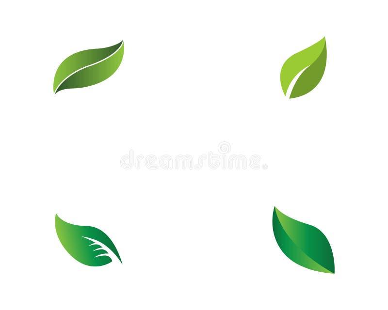 Zielona liść ekologii natury elementu wektoru ikona ilustracji