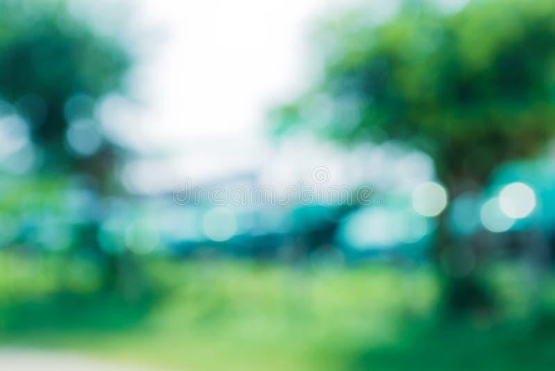 Zielona liścia bokeh plama zdjęcia royalty free
