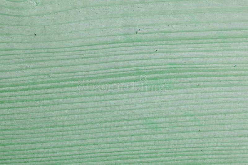 Zielona mennica malujący drewno deski tło i tekstura E Starzejący się drewno desek wzór Drewniany fotografia stock