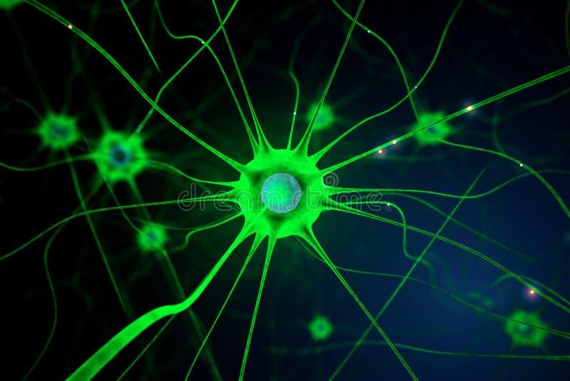 Zielona nerw komórka ilustracji