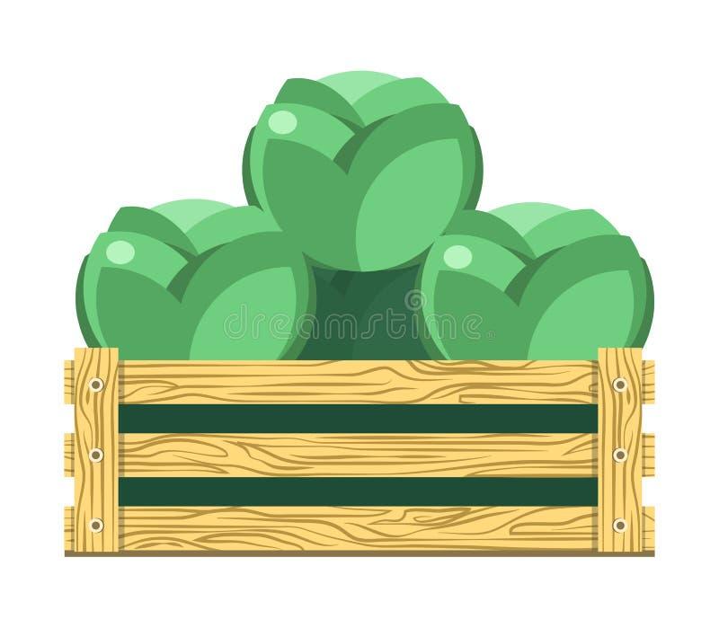 Zielona obfitolistna kapusta w drewnianym pudełku odizolowywał ilustrację ilustracja wektor