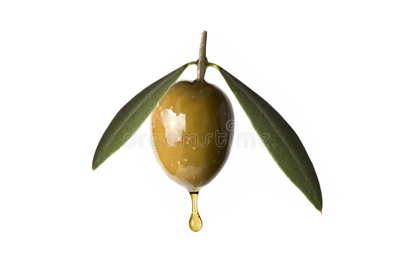 Zielona oliwka z kroplą nafciany spadać. obraz royalty free