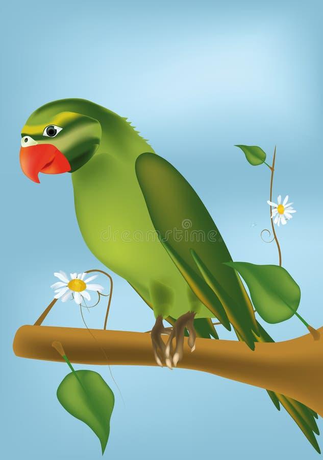 zielona papuga royalty ilustracja