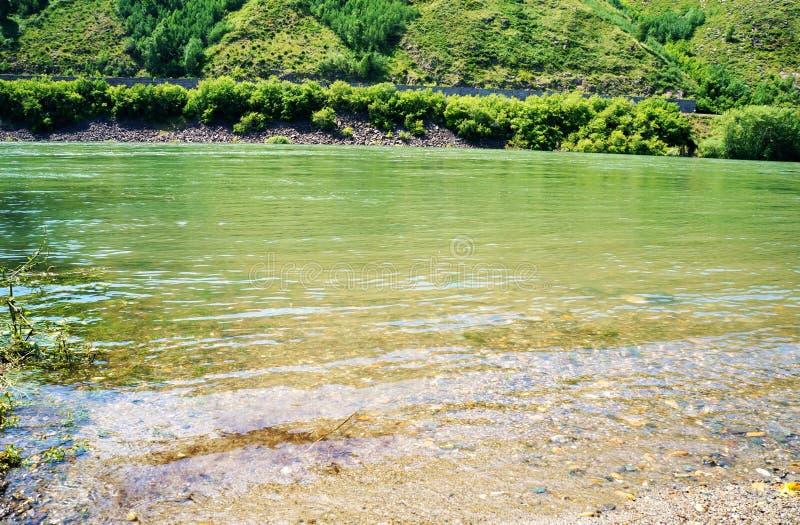 Zielona rzeka! obraz stock