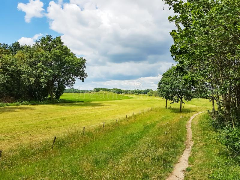 Zielona sceneria wzdłuż rzeki Vecht z pięknymi chmurnymi niebami w Overijsel, holandie zdjęcie stock