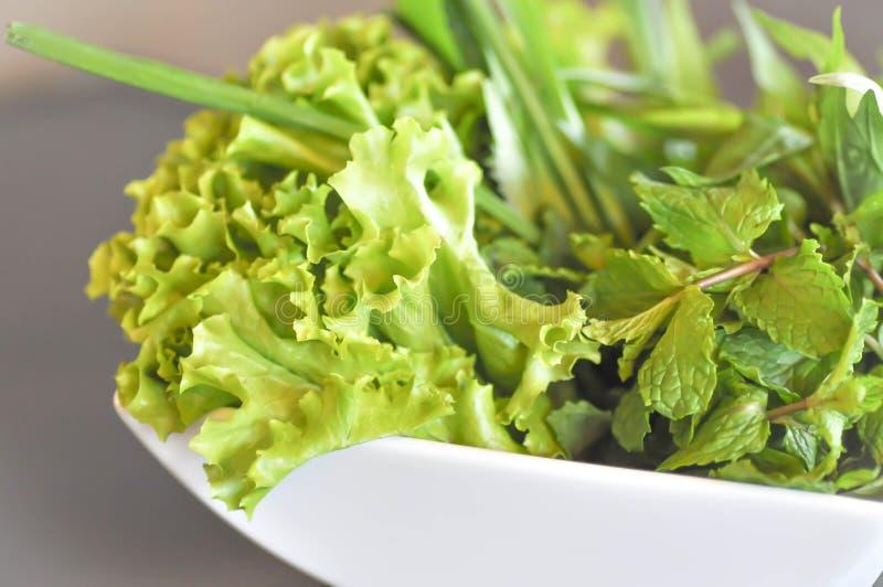 Zielona szalotka, sałata i miętówka, fotografia stock
