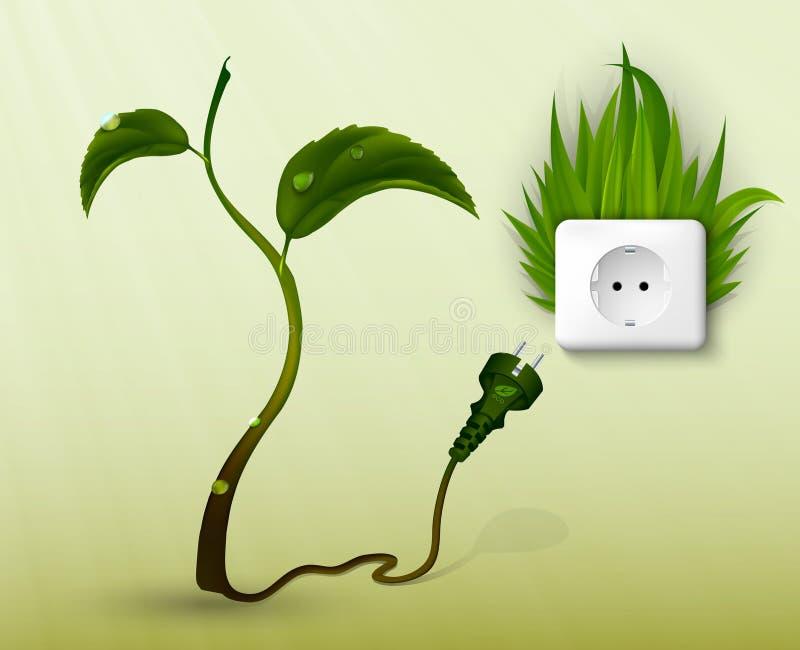 Zielona trawa i nasadka z prymkami ilustracja wektor