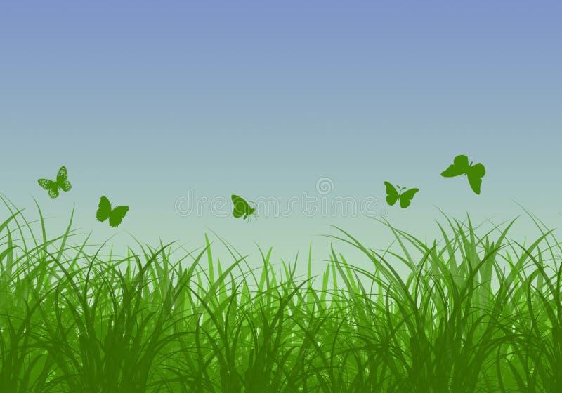 Zielona trawa, motyle i błękitny pogodny niebo wiosny krajobraz, Doskonalić dla tło ilustracji