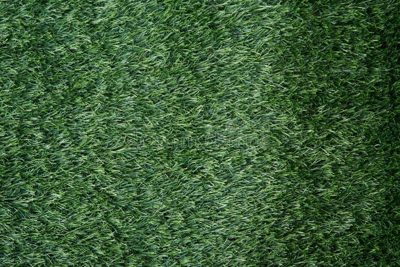 Zielona trawa na podłoga dla sztuki boiska piłkarskiego dla tła zdjęcie stock
