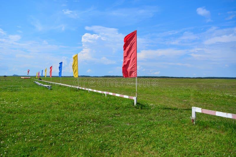 Zielona trawa na polu z niebieskim niebem i dodatek specjalny my fechtujemy się z flagami różni kolory Lotniska pole Teren dla sp zdjęcie royalty free