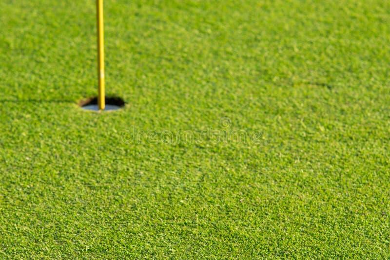 Zielona trawa przy pięknym polem golfowym obraz stock