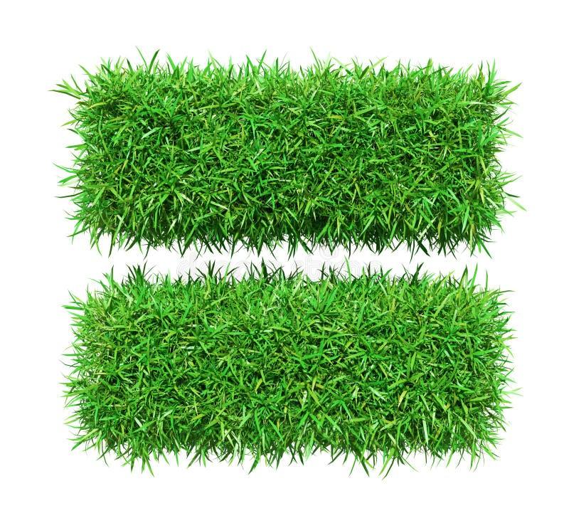 Zielona trawa równo ilustracji