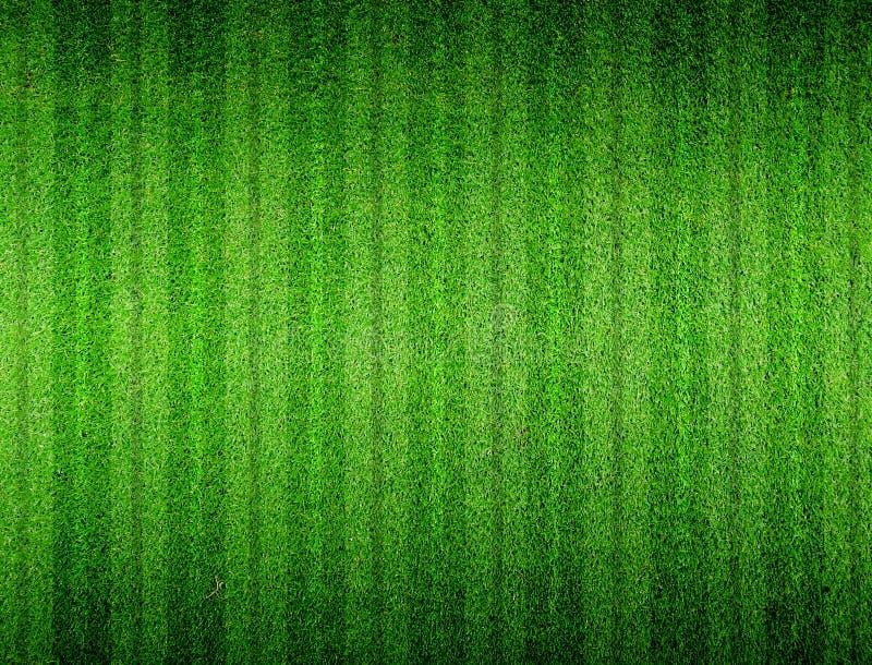 Zielona trawa wykładająca obraz royalty free