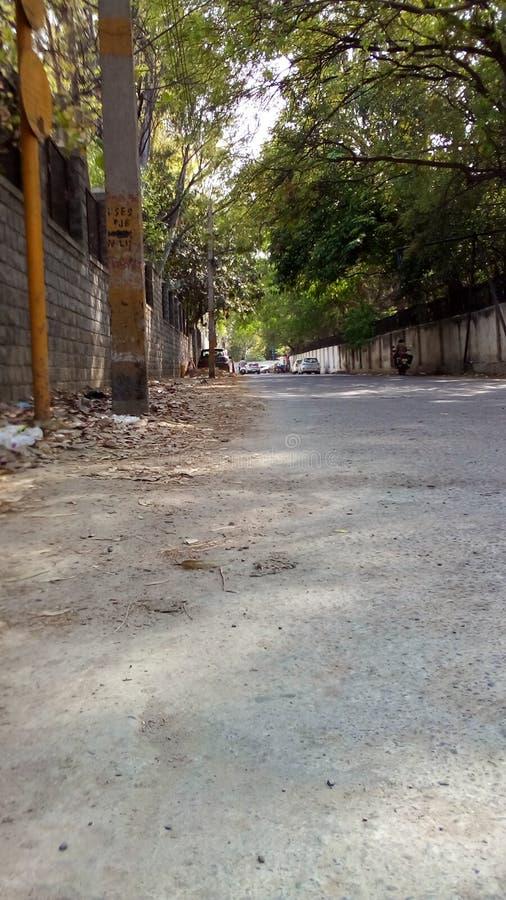 Zielona ulica Delhi obraz royalty free