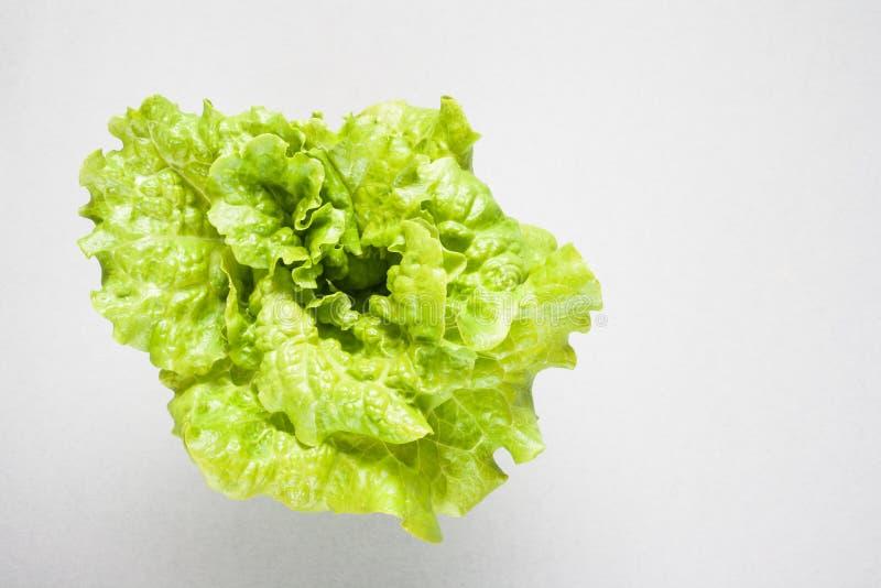 Zielona ?wie?a sa?atka Szary tło z pustą kopii przestrzenią dla zdrowej diety je?? zdrowo poj?cia obrazy royalty free