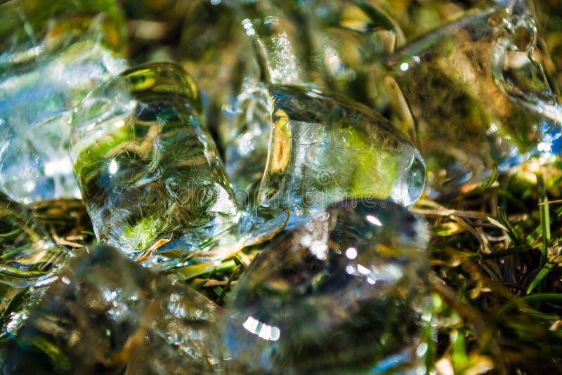 Zielona wiosny trawa na nim kostka lodu k?amstwo sunshine meadow gazon t?o lub tekstura obraz stock