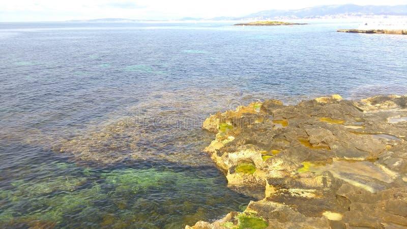 Zielona woda morska przy brzeg, kamiennym brzeg z algami i mech, falezy, żlobić wodą plaża lub ocean, romans, rodzina fotografia stock