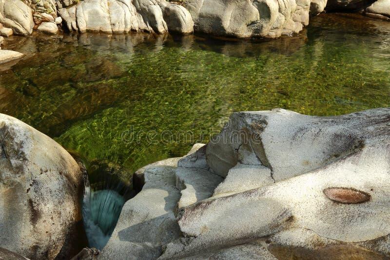 zielona wody zdjęcia royalty free