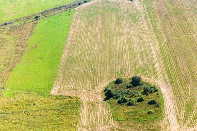 Zielona zima i kolory żółci zbierający pola zdjęcie stock