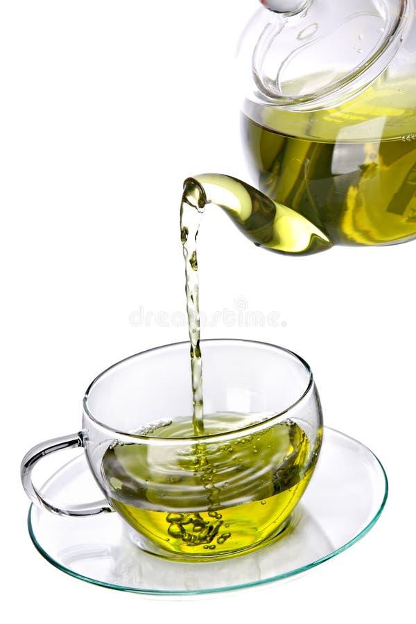 zielona ziołowa herbata obraz stock