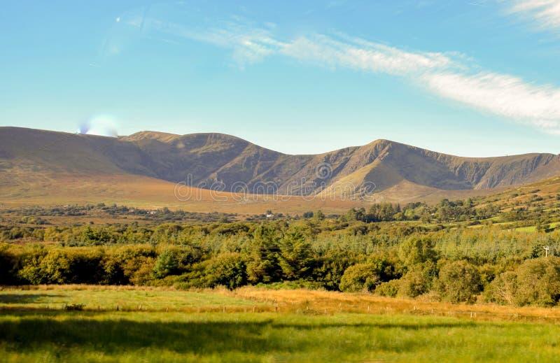 Zielone łąki Irlandia w promieniach położenia słońce fotografia royalty free