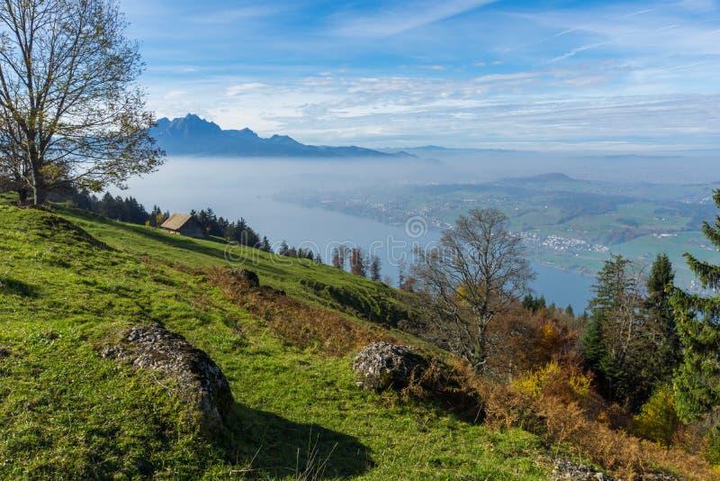 Zielone łąki nad jezioro lucerna blisko góry Rigi, Alps, Szwajcaria fotografia stock