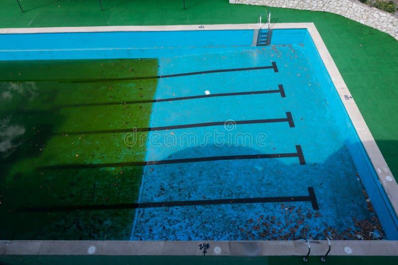 Zielone algi r w zaniedbanym pływackim basenie zdjęcia royalty free