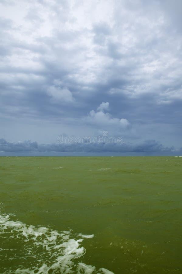 zielone Atlantic wody Senegal obraz stock