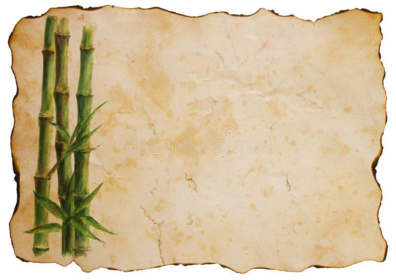 Zielone bambus rośliny na starym brown papieru tle royalty ilustracja