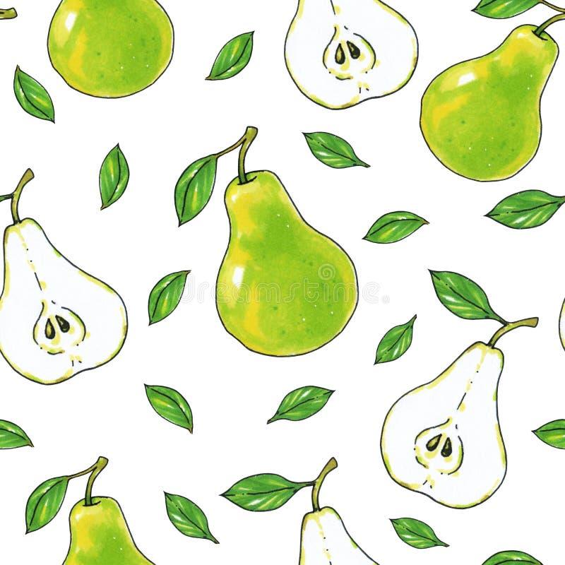 Zielone bonkret owoc odizolowywają na białym tle zdrowa żywność handwork Dla projekta bezszwowy wzór ilustracji
