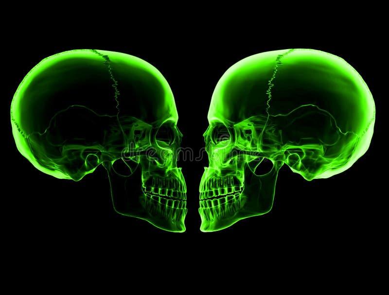 zielone czaszki royalty ilustracja