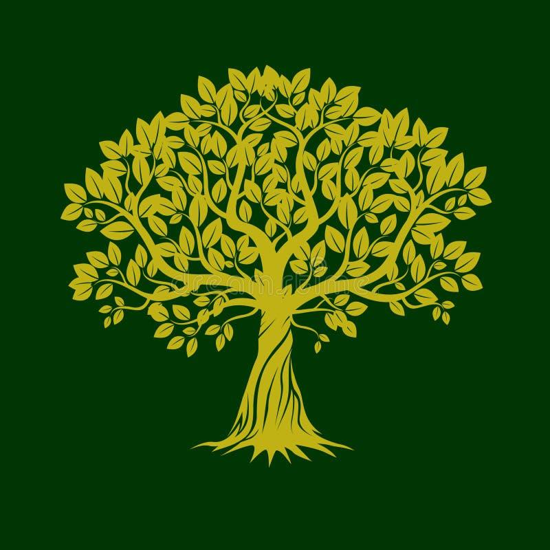 zielone drzewa również zwrócić corel ilustracji wektora royalty ilustracja