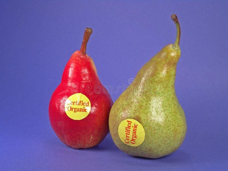 zielone gruszki poświadczania organiczne. zdjęcia royalty free