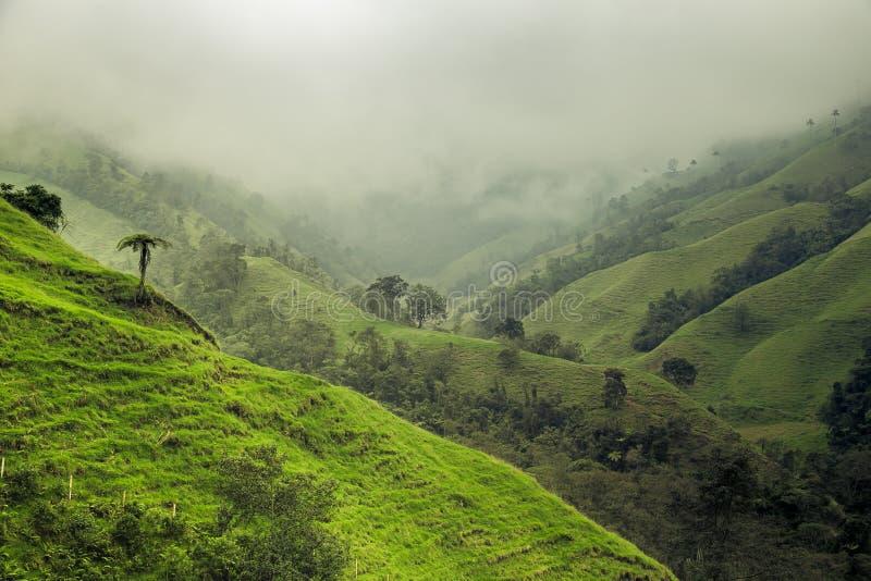 zielone krajobrazowe góry obrazy royalty free