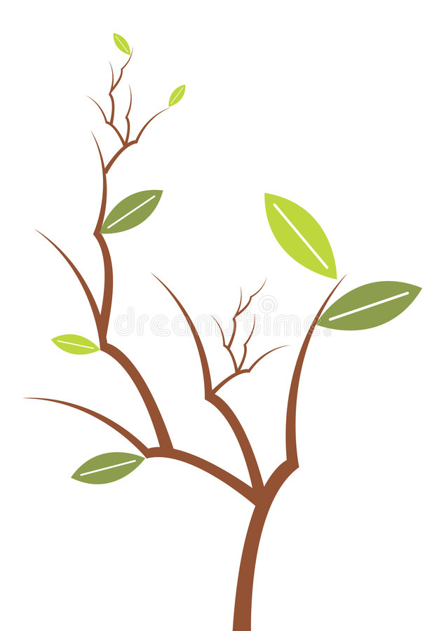 zielone liści wektor roślin ilustracji