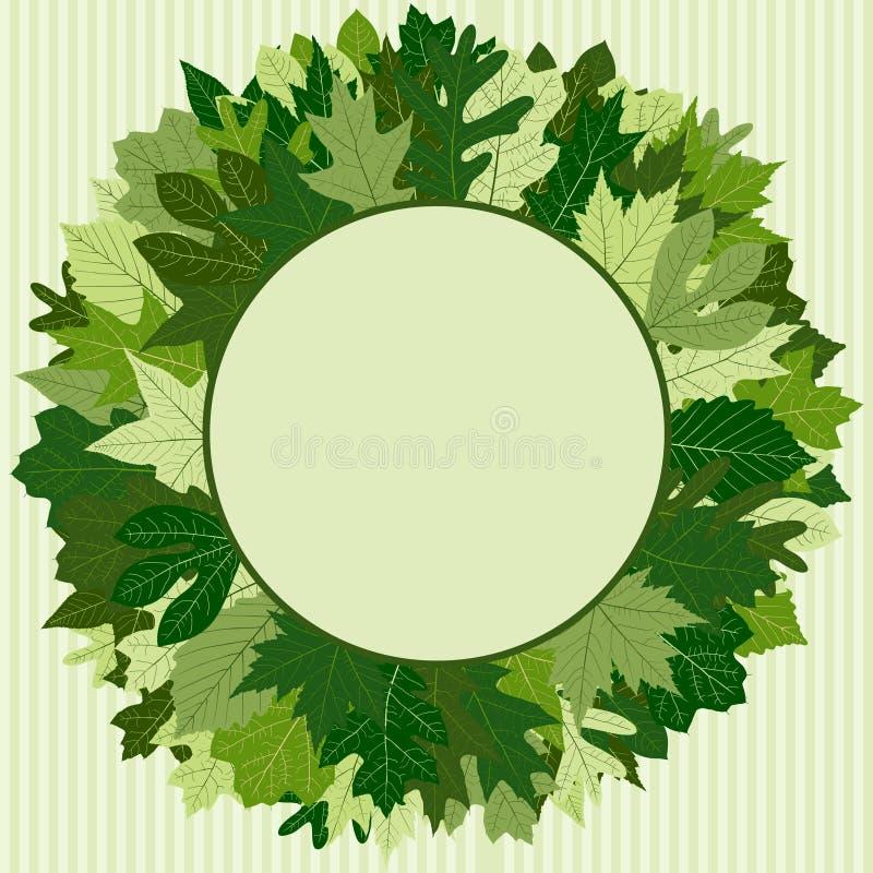 zielone liści wianek ilustracji