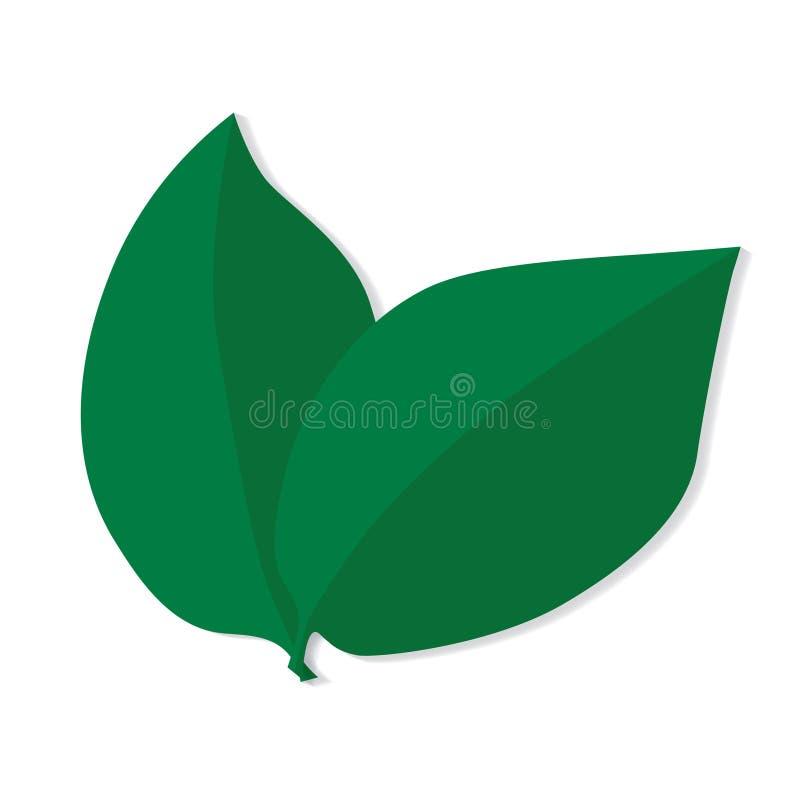 zielone liście ilustracja wektor